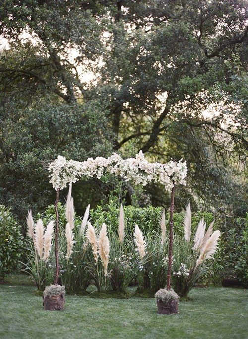wedding arch with white flowers surrounded with pampas and herbs