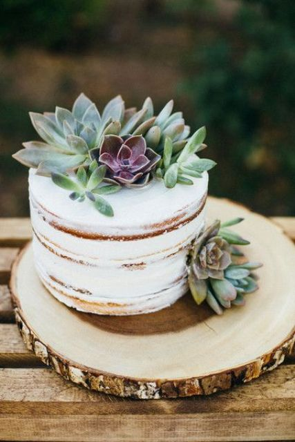 one-tier, semi-naked wedding cake with a succulent cake topper