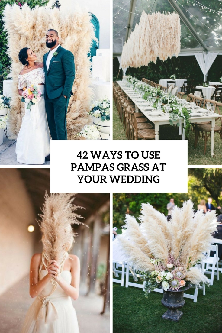 ways to use pampas grass at your wedding cover