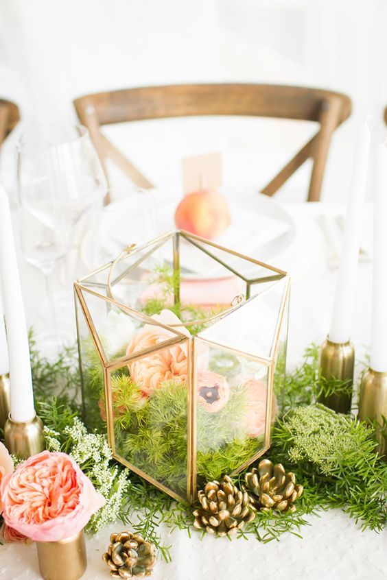 terrarium with flowers and evergreens