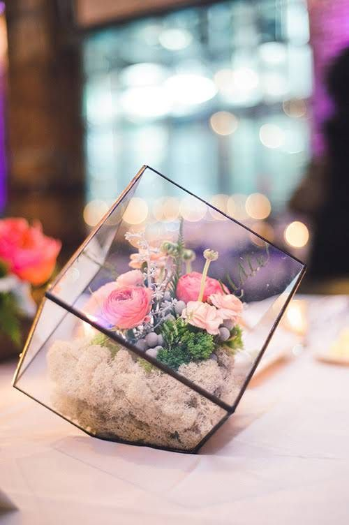 stunning cube terrarium with flowers inside