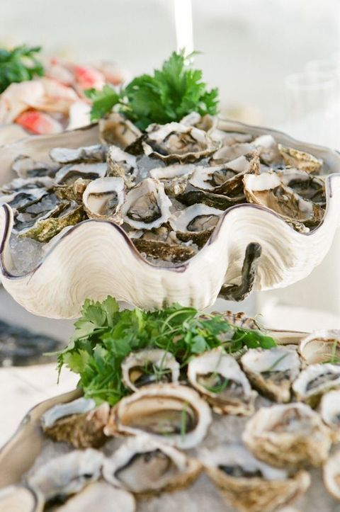 oysters served in giant shells are a cool idea