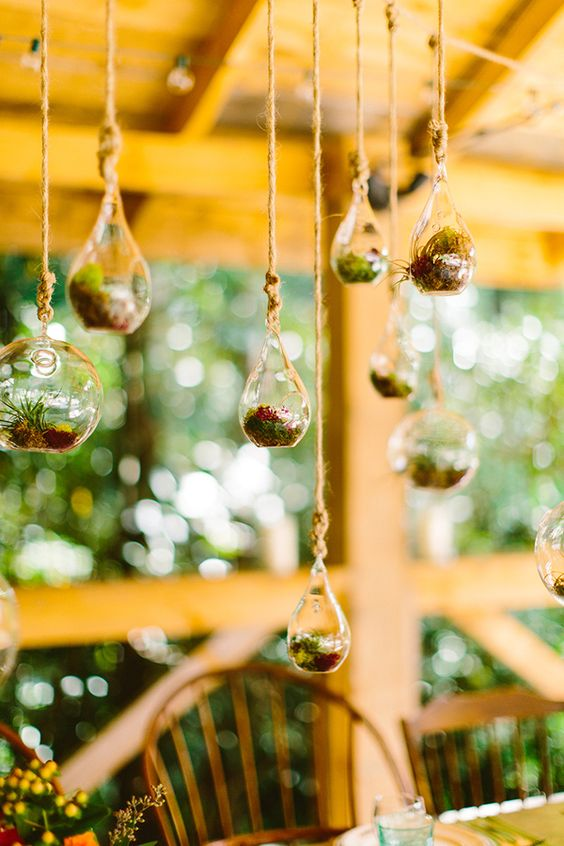 tiny hanging terrariums over the reception