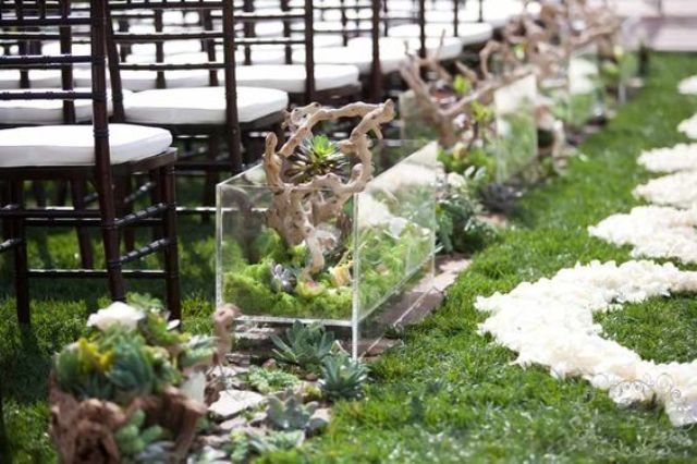 terrariums of moss succulents, diftwood and orchids lining wedding aisle
