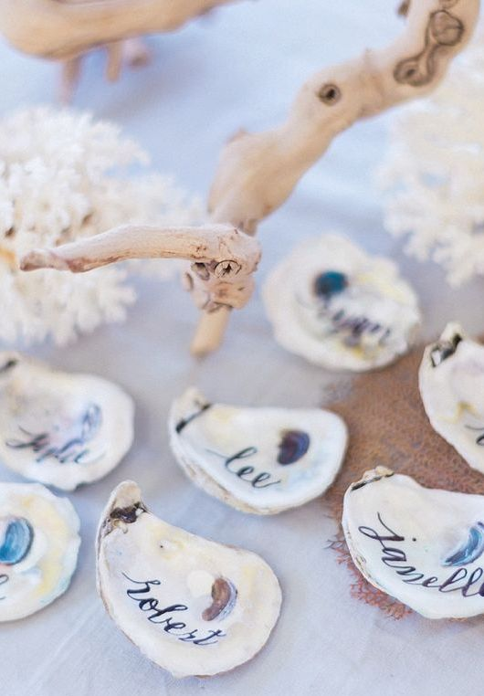 shells used as place cards and favors at the same time