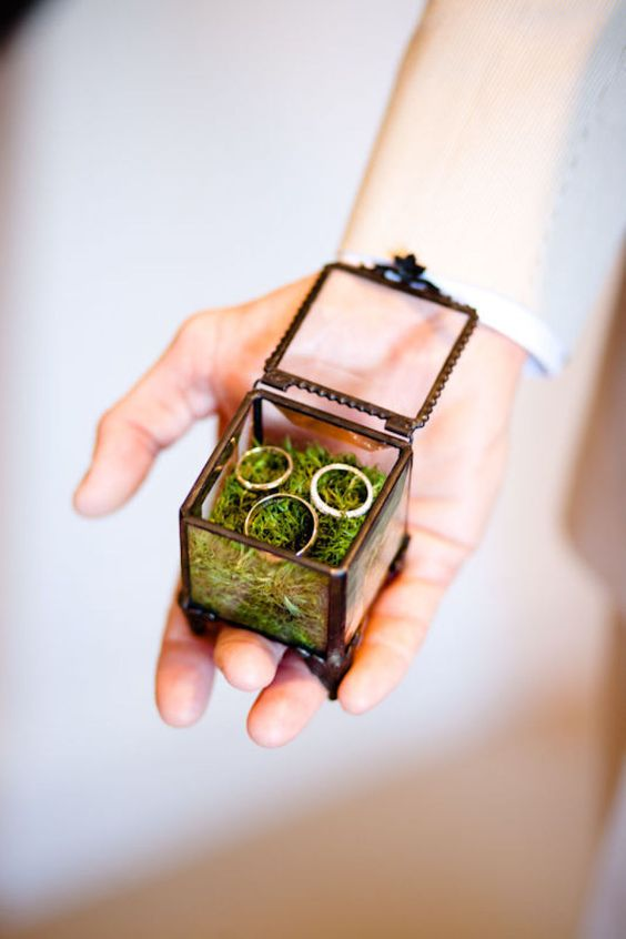 tiny terrarium ring box filled with moss