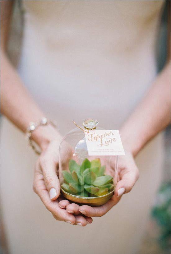 succulent terrarium wedding favors