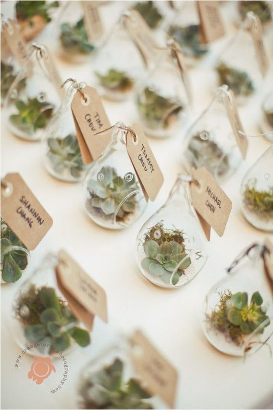 tiny succulent terrariums as wedding favors