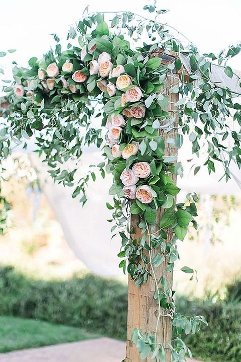 a wedding arch decorated with lush greenery and peachy flowers