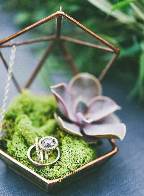 geometric brass and glass wedding ring box with moss and a succulent