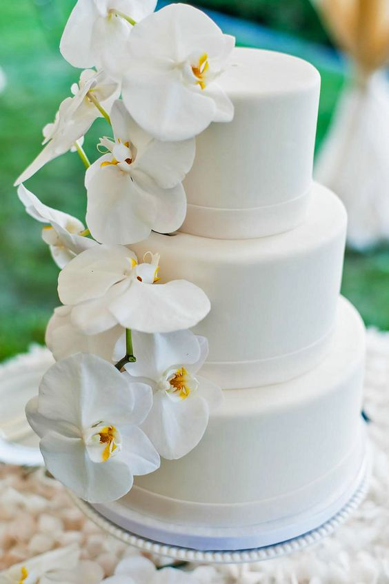 elegant white cake decorated with white orchids