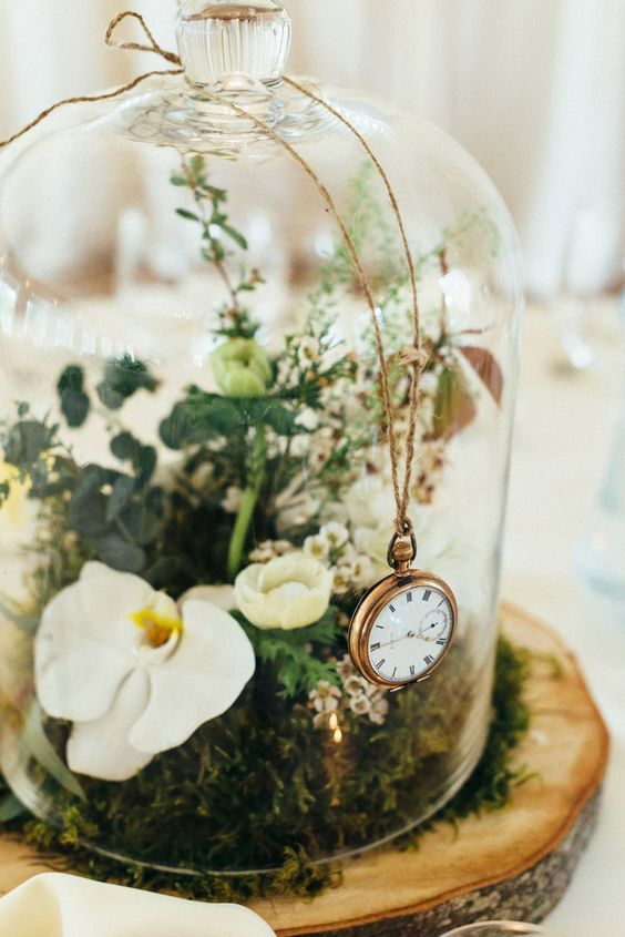 a cloche with moss, orchids and a pocket watch on top