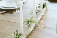 17 a birch log centerpiece with LEDs and air plants