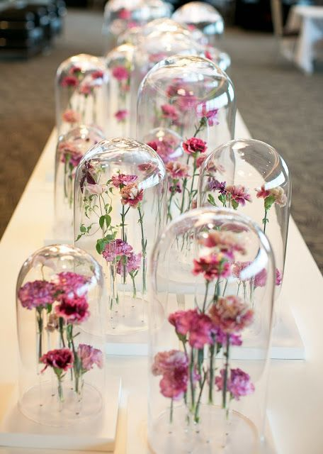 cloches with pink flowers that seem to float in the air