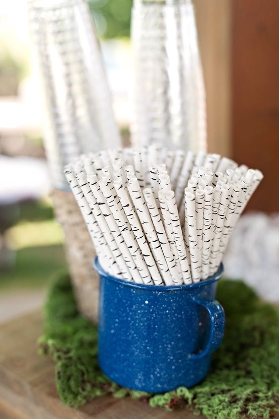 birch tree paper straws