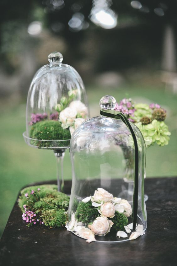 cloches with moss and white and blush blooms