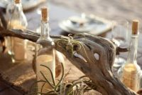 19 a piece of driftwood with airplants for a beach tablescape