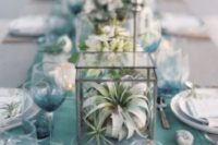 20 air plant terrariums for a beach-inspired wedding tablescape