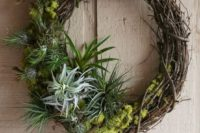 23 a rustic wreath with moss and air plants looks cool, fresh and original