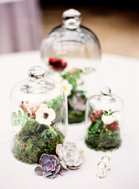 cloches of different sizes with moss, leaves and flowers