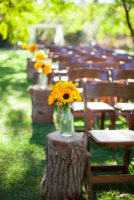 wooden logs with sunflowers in mason jars