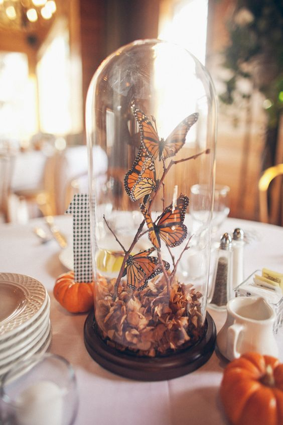 a cloche with butterflies and fall leaves