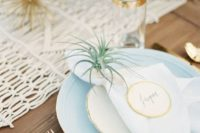 27 air plants for holding place cards and as table decor