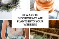 33 ways to incorporate air plants into your wedding cover