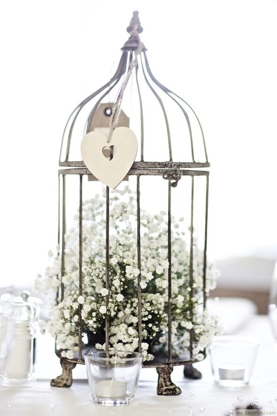 a vintage bird cage with baby's breath