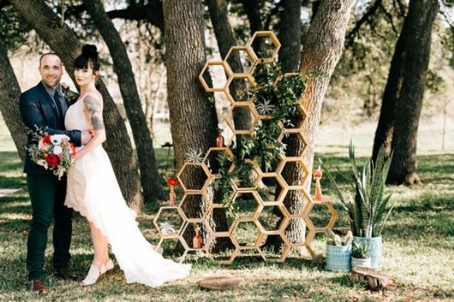 stacked hex backdrop with air plants and succulents for a quirky look