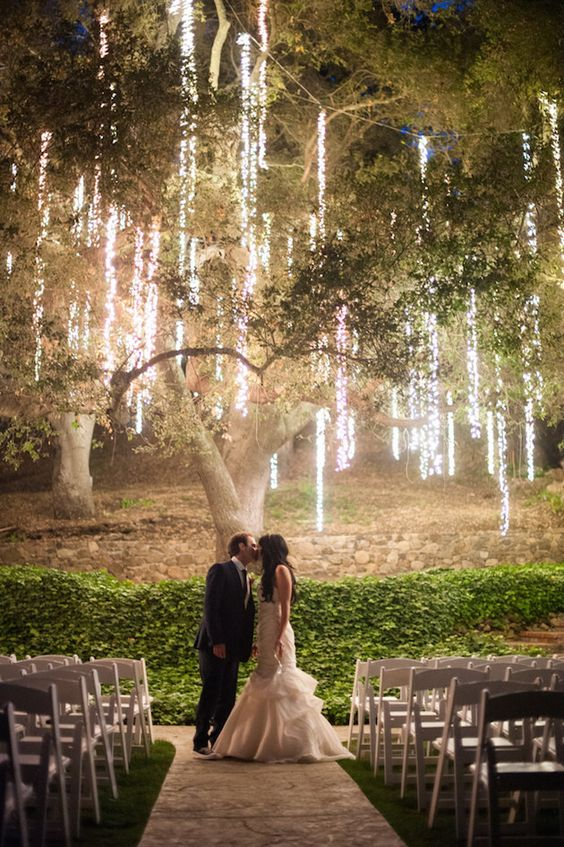 vertical lights hanging from the tree create a magic ambience