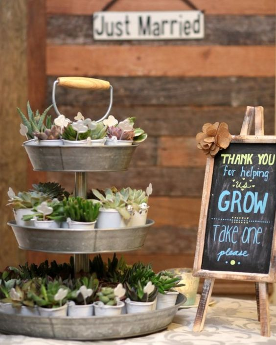 display shower favors, for example, potted succulents on a rustic metal stand
