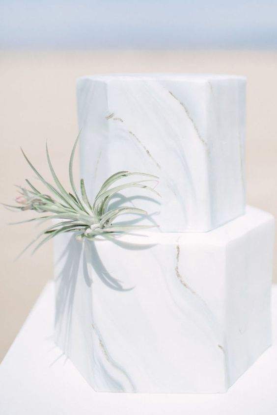 marble hexagon-shaped wedidng cake topped with an air plant