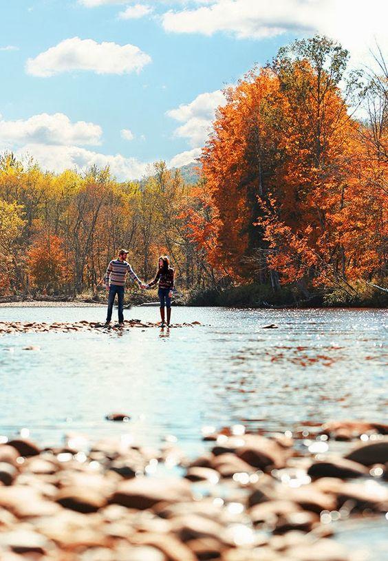 gehen Sie für einen Spaziergang entlang des Flusses und nehmen Sie schöne Aufnahmen in der it und im Wald herum