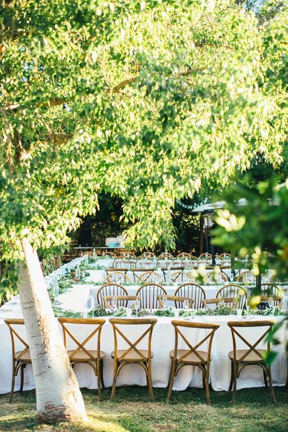 cozy wedding reception with much greenery and tables located to stimulate conversations