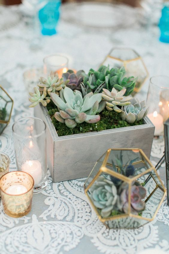 a whitewashed wooden box with moss and various succulent for a modern wedding
