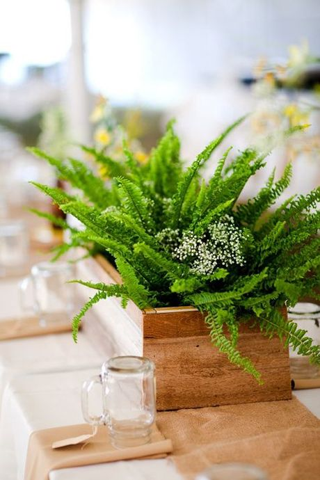 a wooden box with ferns is a cool idea for a woodland wedding