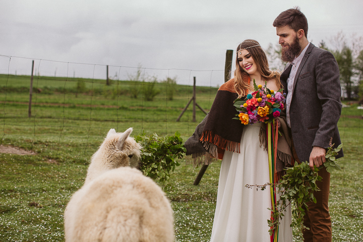 Bright Outdoor Wedding Shoot With Alpacas