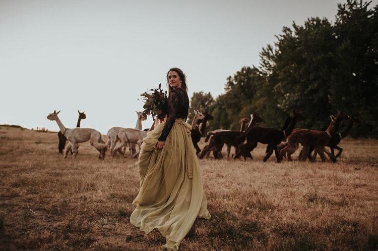 Lassen Sie sich inspirieren für die Erstellung Ihrer eigenen Braut-und Hochzeits-Shooting auf einer Alpaka-farm