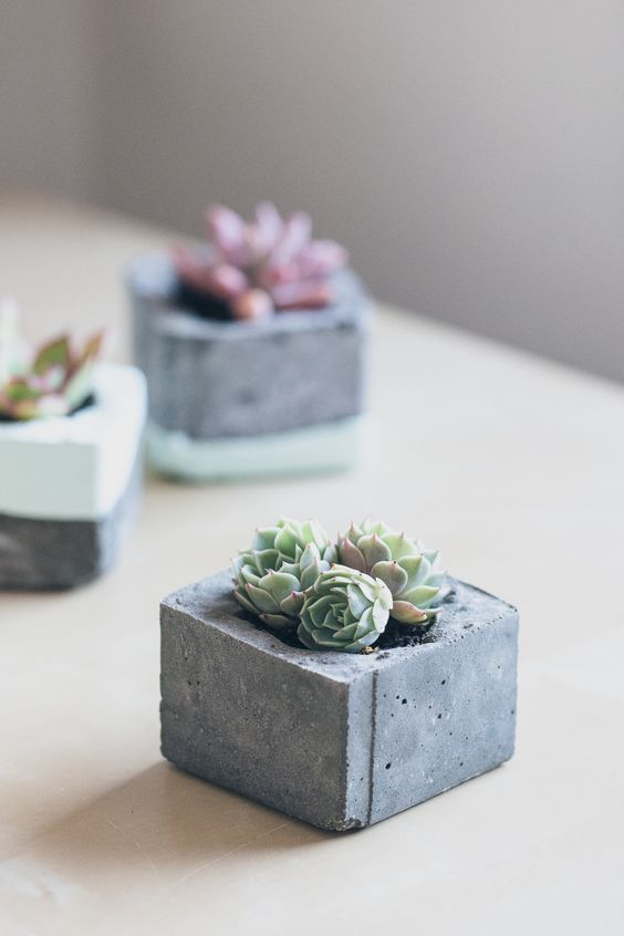geometric concrete planters with succulents will be a great fit for a modern tablescape