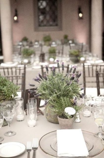 a soft greyish tablescape with a potted lavender centerpiece