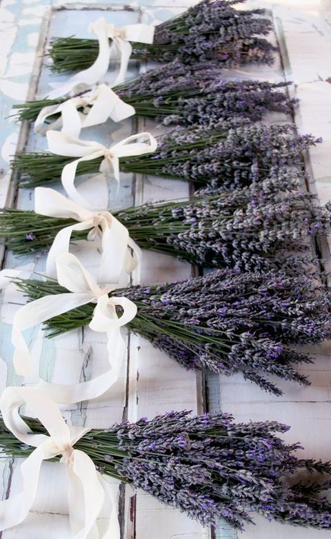 lavender with cream ribbon bows as bridesmaids' bouquets