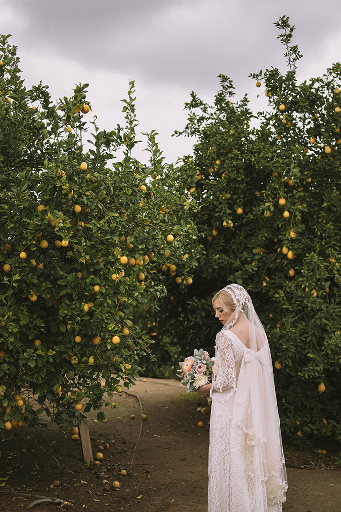 Elegant Vintage Citrus Wedding In California