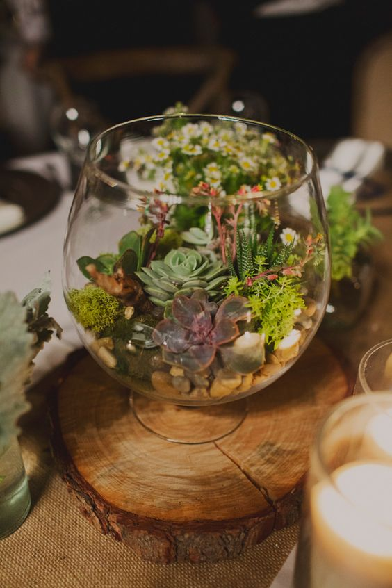 a glass bowl with pebbles, moss and succulents is a small terrarium, which is great for a woodland wedding