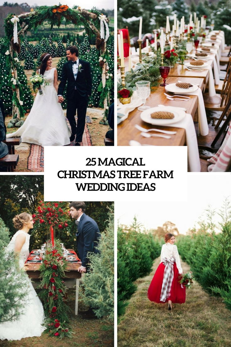 magical christmas tree farm wedding ideas cover