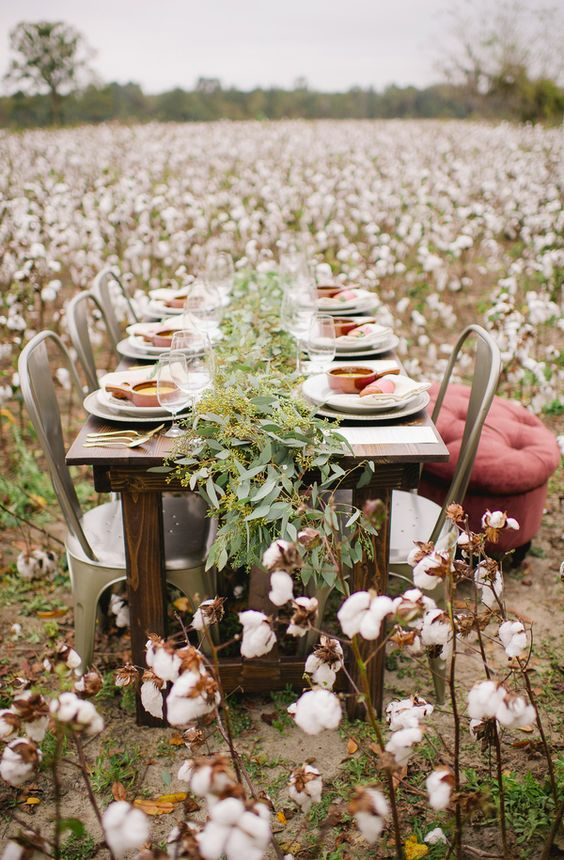 go for a winter wedding into a cotton field to get a cozy ambience around