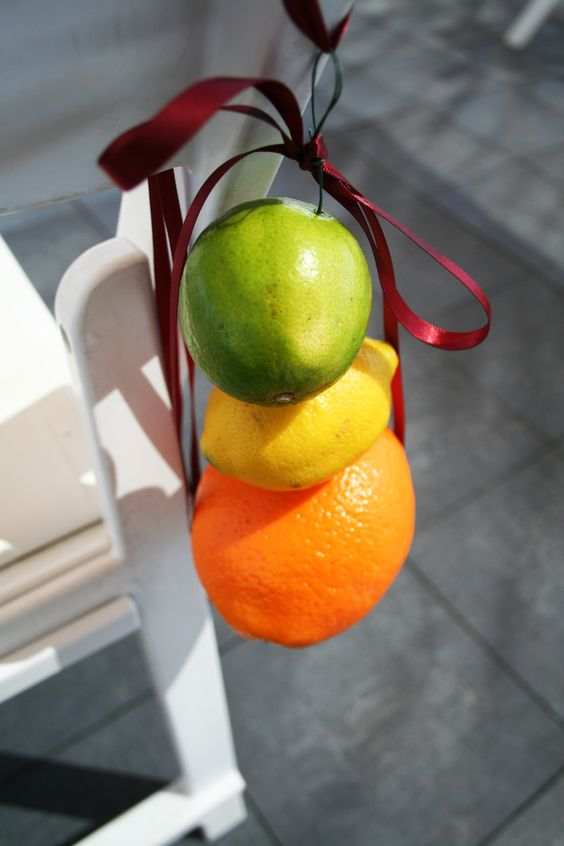 decorate the ceremony chairs with all kinds of citrus you like to make the aisle cheerful and colorful