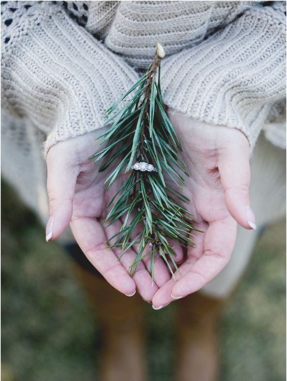 show off your engagement ring on a fir branch