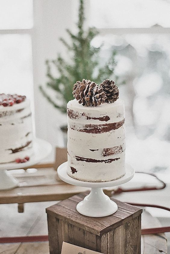 a simple semi-naked wedding cake topped with snowy pinecones for a winter wedding