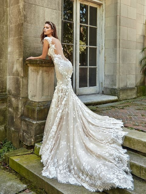 a champagne mermaid wedding dress with cap sleeves, an illusion open back and a train to make a statement